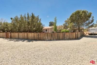 Acton Single Family Home For Sale: 34401 Peaceful Valley Road