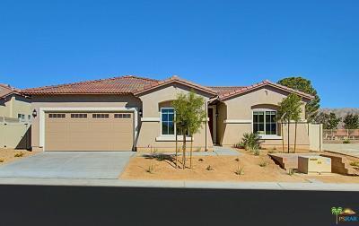 Desert Hot Springs Single Family Home For Sale: 64148 Van Horn Mountains Ct.