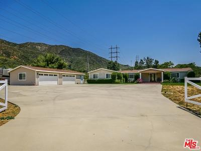 Saugus Single Family Home For Sale: 38591 San Francisquito Canyon Road