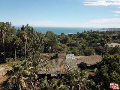 Los Angeles County Single Family Home For Sale: 27547 Pacific Coast Highway