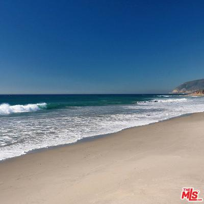 Malibu Single Family Home For Sale: 11770 Pacific Coast Highway #U