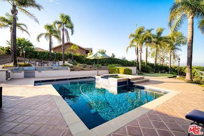 Thousand Oaks Single Family Home For Sale: 1061 Wildwood Avenue