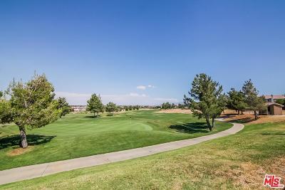 Palmdale Single Family Home For Sale: 40534 Via Verdad