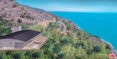 Malibu Single Family Home For Sale: 20527 Big Rock Drive