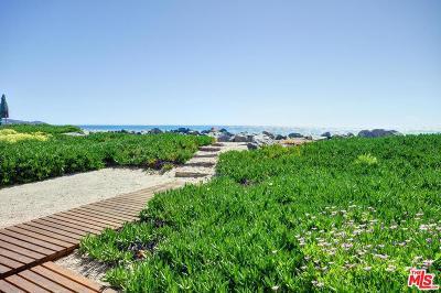 Malibu Single Family Home For Sale: 31330 Broad Beach Road
