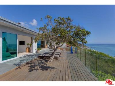 Malibu Single Family Home For Sale: 33428 Pacific Coast Highway