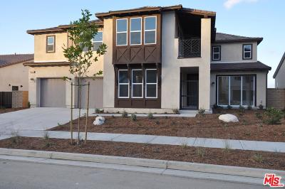 Canyon Country Single Family Home For Sale: 18663 Juniper Springs Drive
