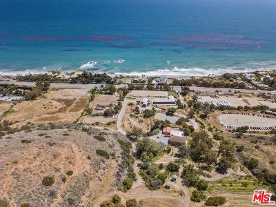Malibu Single Family Home For Sale: 33603 Pacific Coast Highway