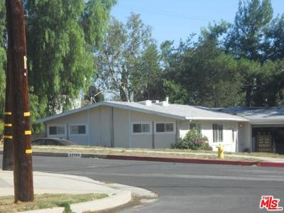 Granada Hills Single Family Home For Auction: 17138 Sunderland Drive