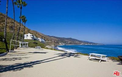 Malibu CA Condo/Townhouse For Sale: $1,000,000