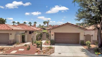 Palm Desert Single Family Home For Sale: 513 Falcon View Circle