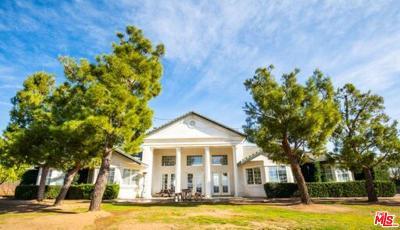 Single Family Home For Sale: 9640 Sierra Highway