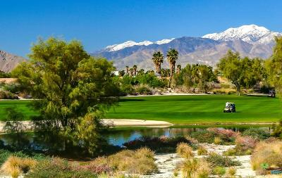 Palm Springs Single Family Home Active Under Contract: 729 Straub Lane