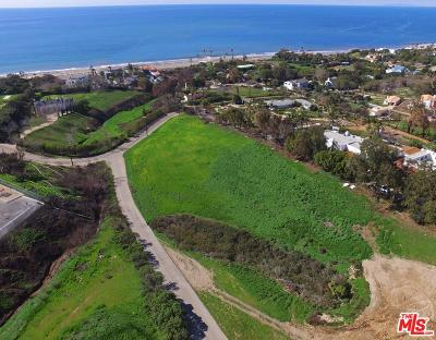 Malibu Residential Lots & Land For Sale: Morning View