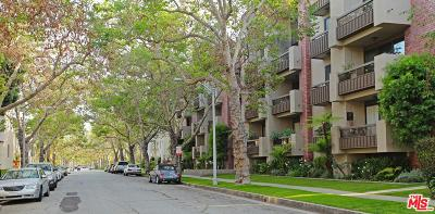 Beverly Hills Condo/Townhouse For Sale: 141 South Linden Drive #206