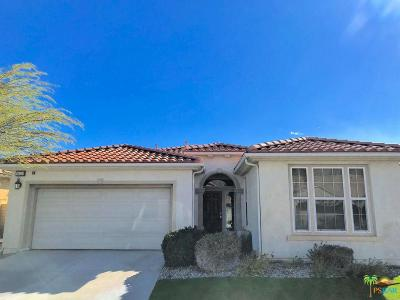 Palm Springs Single Family Home For Sale: 3624 Cliffrose Trails