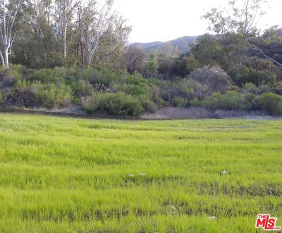 Calabasas Residential Lots & Land For Sale: 24577 Mulholland Hwy