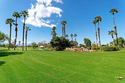 Palm Desert Condo/Townhouse For Sale: 77674 South Woodhaven Drive
