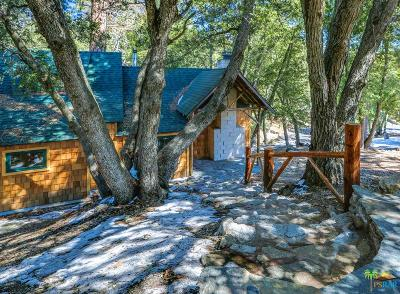Riverside County Single Family Home For Sale: 24460 Banning Idyllwild Road