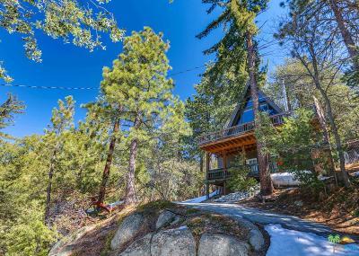 Riverside County Single Family Home For Sale: 24636 Logan Creek Road