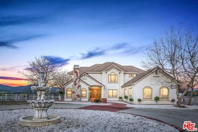 Agua Dulce Single Family Home For Sale: 11718 Bedworth Road