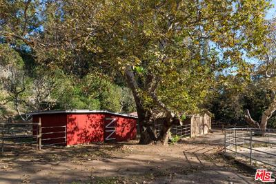 Malibu Single Family Home For Sale: 6038 Ramirez Canyon Road