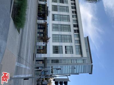 Pasadena Condo/Townhouse For Sale: 175 South Lake Avenue #309