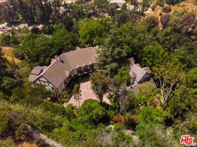 Single Family Home For Sale: 2781 Benedict Canyon Drive