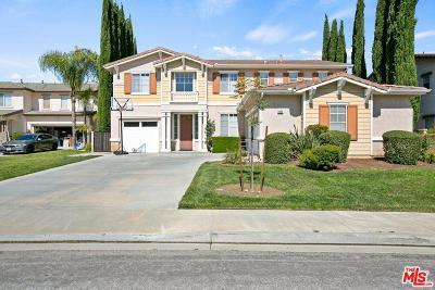 Simi Valley Single Family Home For Sale: 1025 King Palm Drive