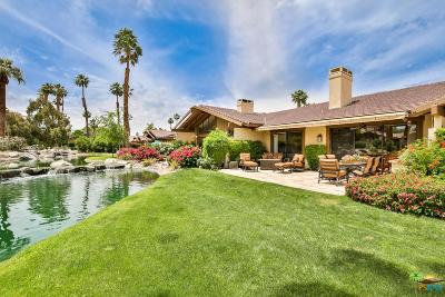 Palm Desert Condo/Townhouse Active Under Contract: 317 Red River Road