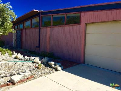 Palm Springs Single Family Home For Sale: 969 East Francis Drive