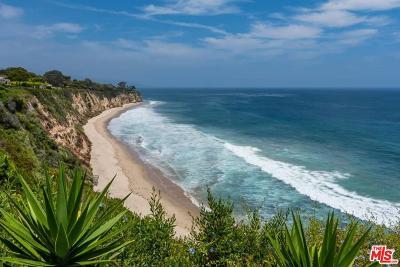Malibu Single Family Home For Sale: 29130 Cliffside Drive