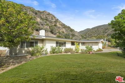 Malibu Single Family Home For Sale: 30607 La Sonora Drive