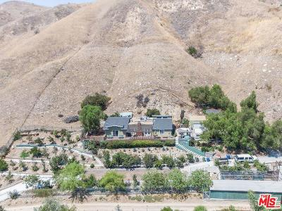 Lakeview Terrace Single Family Home For Sale: 9975 Foothill