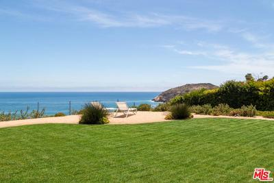Malibu Single Family Home For Sale: 29046 Cliffside Drive