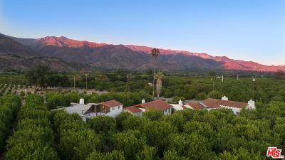 Ventura County Single Family Home For Sale: 985 Fordyce Road