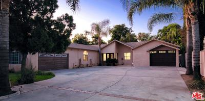 Northridge Single Family Home For Sale: 17363 Chase Street