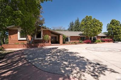Moorpark Single Family Home For Sale: 6005 Grimes Canyon Road