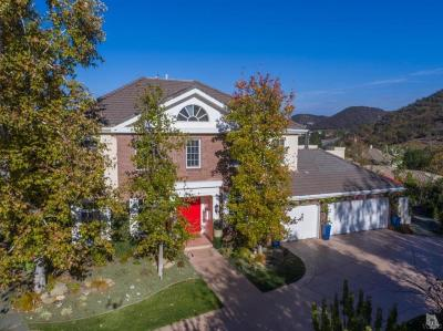 Thousand Oaks Single Family Home For Sale: 841 West Stafford Road