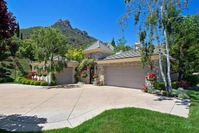 Thousand Oaks Single Family Home For Sale: 2939 Morvale Drive