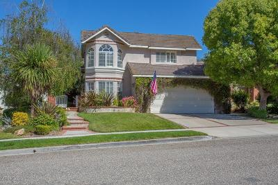 Simi Valley Single Family Home For Sale: 360 Misty Falls Court