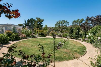 Ventura Single Family Home For Sale: 912 Via Cielito