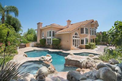 Westlake Village Single Family Home For Sale: 2664 Kirsten Lee Drive