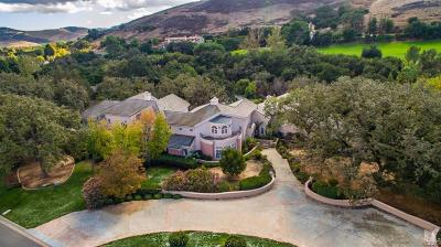 Westlake Village Single Family Home For Sale: 5424 Island Forest Place