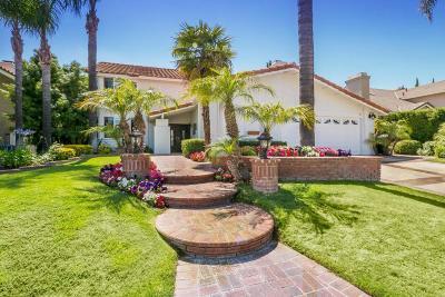Agoura Hills Single Family Home For Sale: 6145 Rustling Oaks Drive