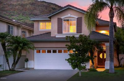 Thousand Oaks Single Family Home For Sale: 3185 White Cedar Place