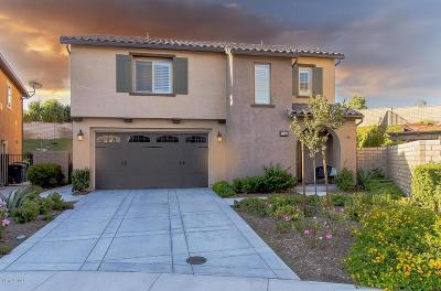 Moorpark Single Family Home For Sale: 7124 Bergamot Avenue