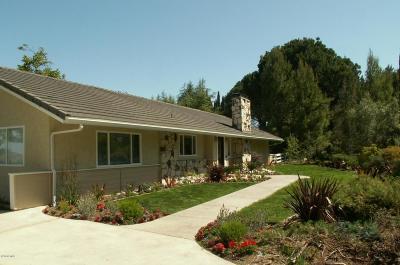 Thousand Oaks Single Family Home For Sale: 939 Bruce Circle