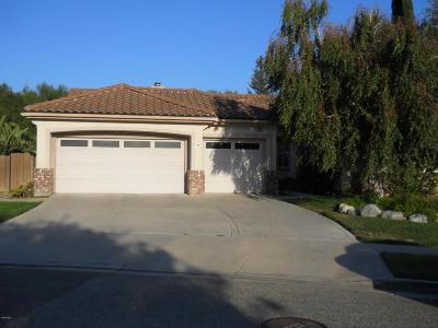 Simi Valley Single Family Home For Sale: 2820 Waterfall Lane