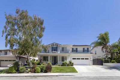 Simi Valley Single Family Home For Sale: 1220 King Palm Drive